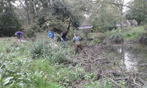 wild banbury volunteers